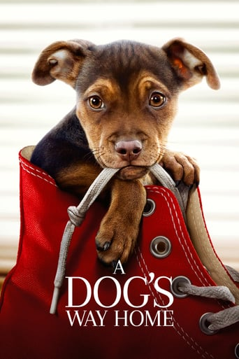 download or watch A Dog's Way Home full movie online free openload