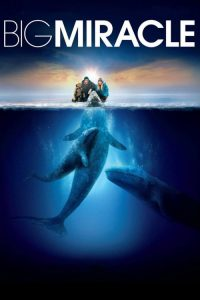 download or watch Big Miracle full movie online free openload