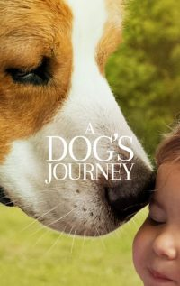 download or watch A Dog's Journey full movie online free Openload