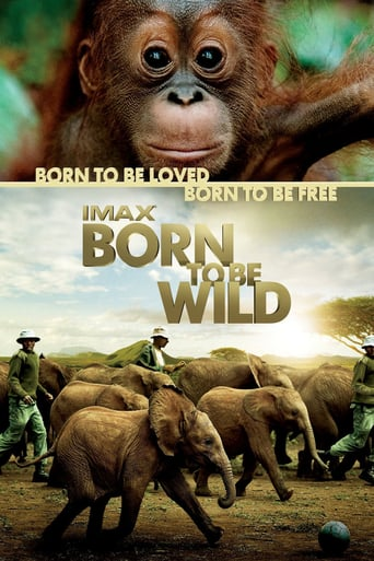 download or watch Born to Be Wild full movie online free openload