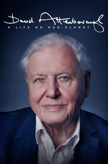 download or watch David Attenborough A Life on Our Planet full movie online free Openload