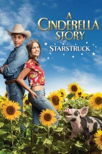 download or watch A Cinderella Story Starstruck full movie online free Openload