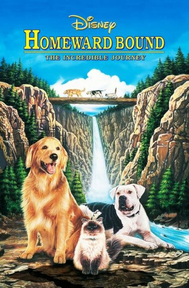 download or watch Homeward Bound The Incredible Journey full movie online free Openload